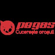 Pegas_500x500